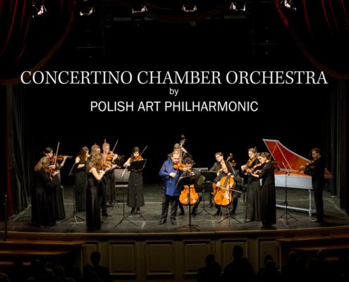 Vivaldis vier Jahreszeiten gespielt vom Concertino Chamber Orchestra in Erfurt